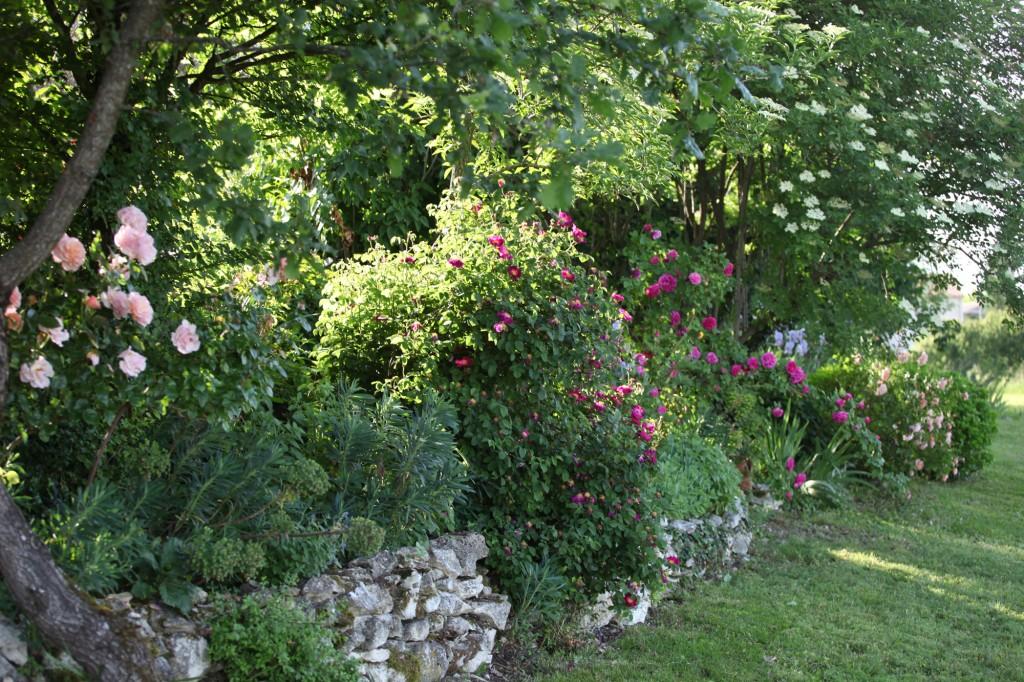 Jardin de la Bigotie © Véronique Mure