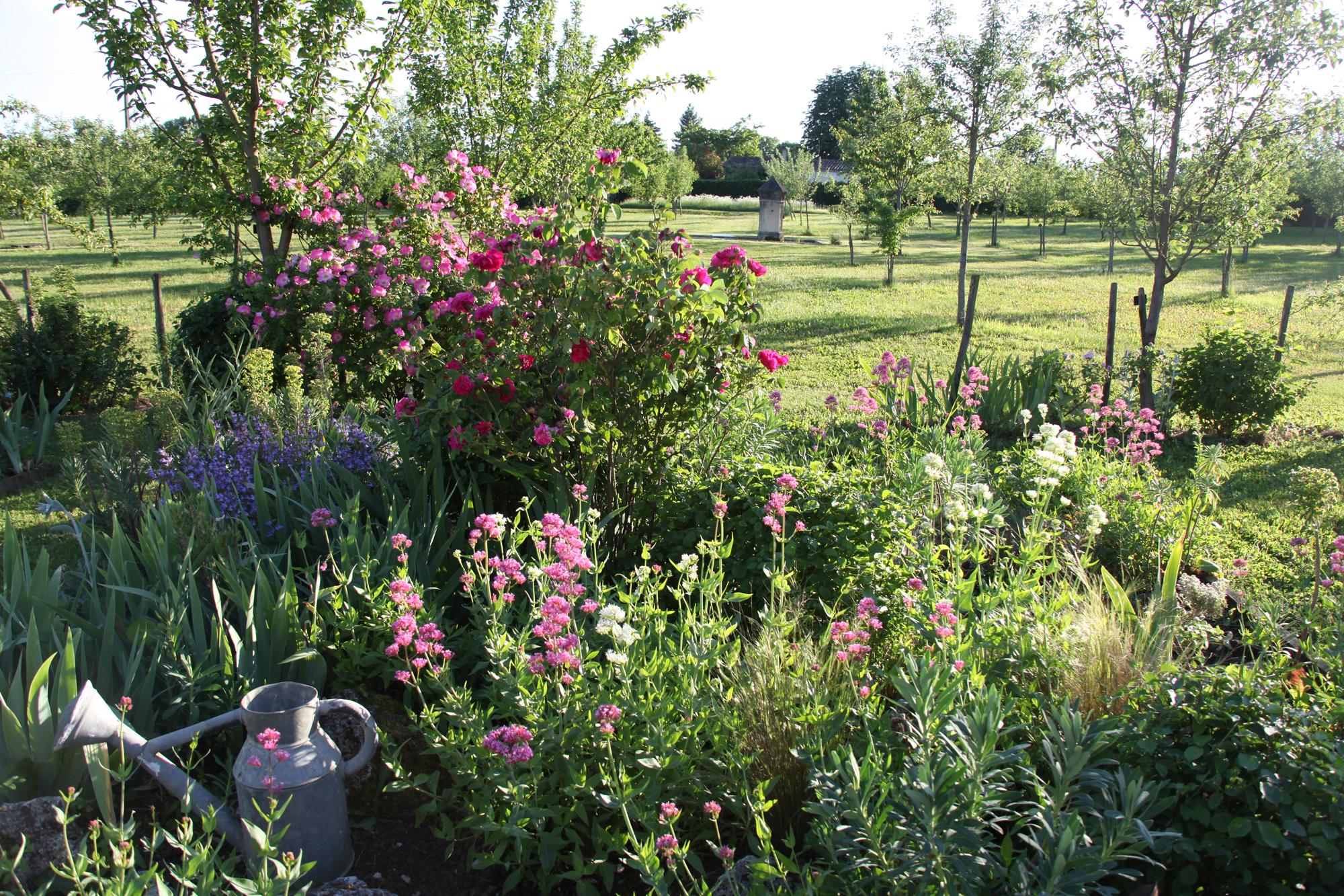 L t au jardin article paru dans le bufarot n 14 for Article jardin