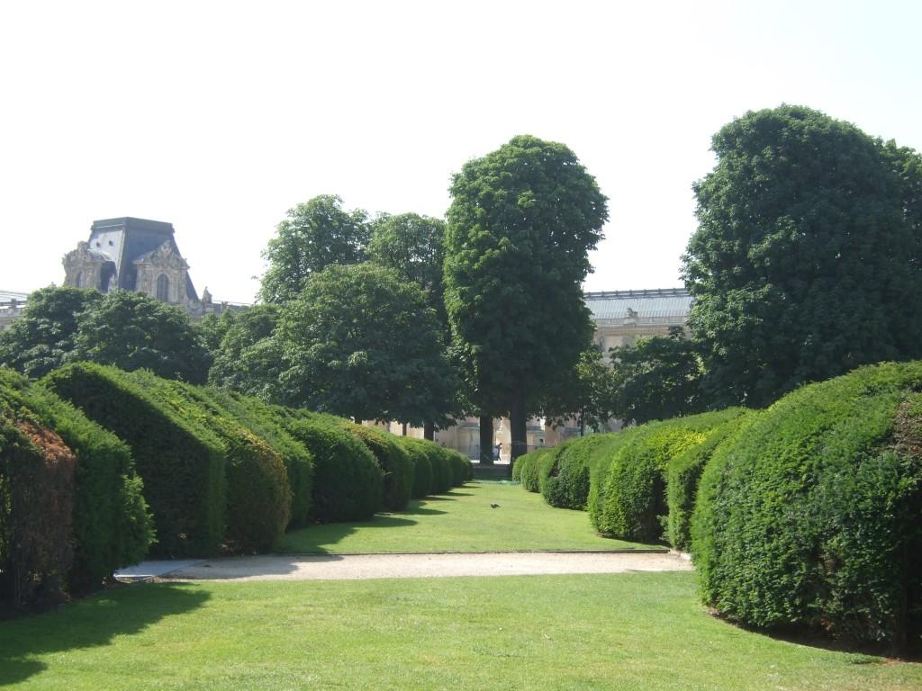 aller fl ner aux tuileries botanique jardins paysages. Black Bedroom Furniture Sets. Home Design Ideas