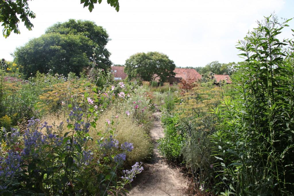 Jardin d'essai de Piet Oudolf