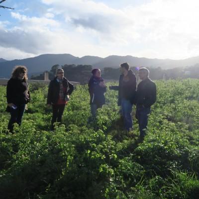 Balades-dialogues – Bastia (22) 2016 – 2017