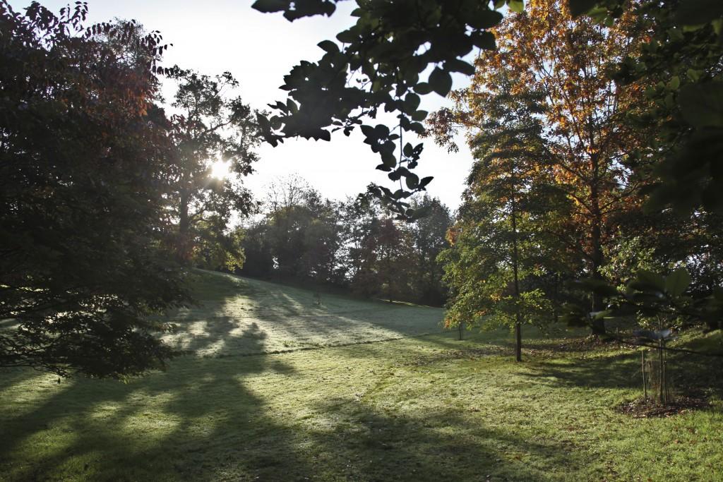 #veroniquemure #Sedelle #arboretum #Creuse
