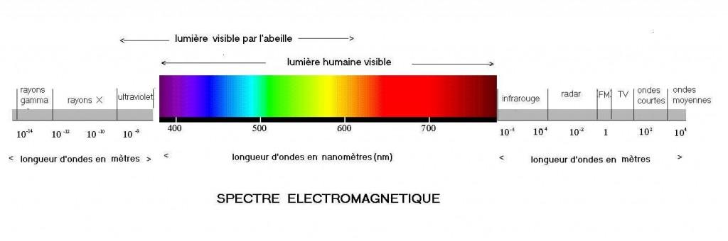 spectre-electromagnetique-ondes-lumiere
