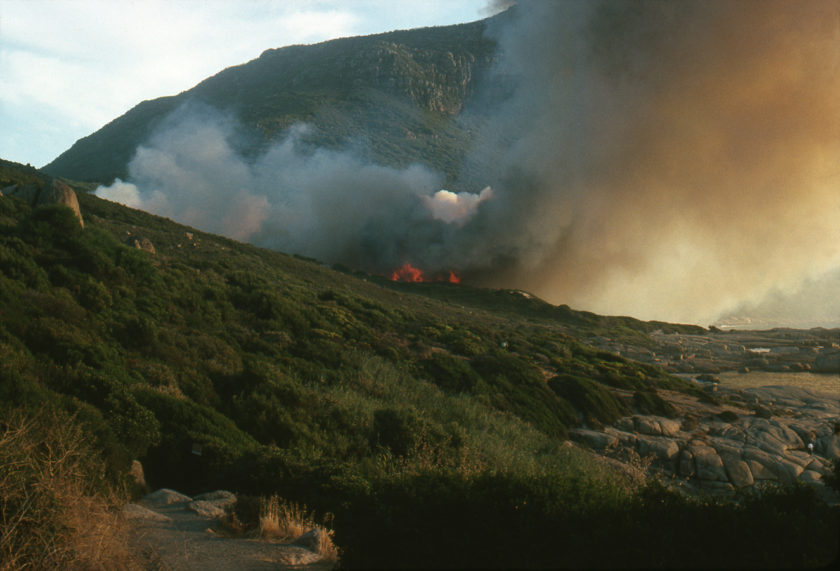 Paysages du feu