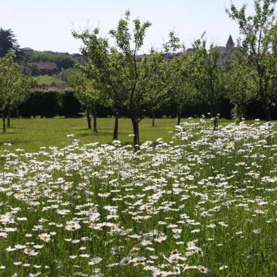Jardins de la Bigotie, Marsalès (24) 2002 – 2013