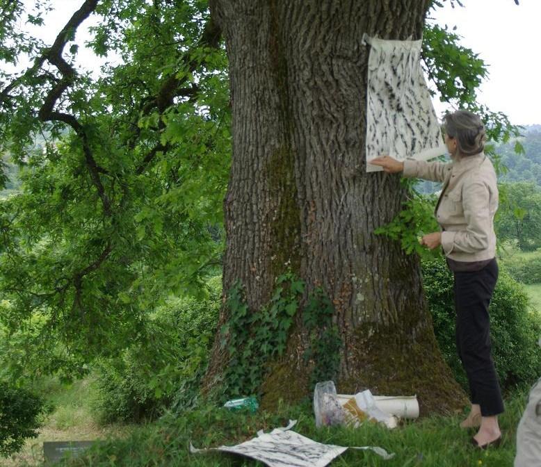 Le bois et l'artiste.