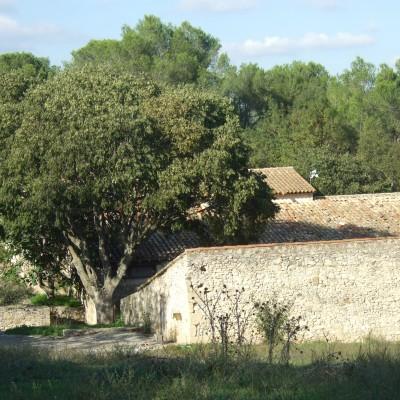 Zoo du Lunaret, Montpellier (34) 2013