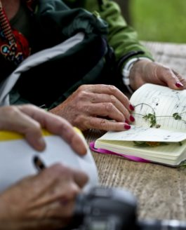 Les botanistes du Cadref, sous la conduite de leur chef…