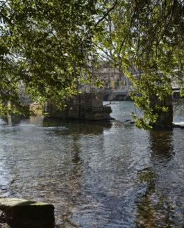 Le jardin de Pétrarque – Fontaine de Vaucluse