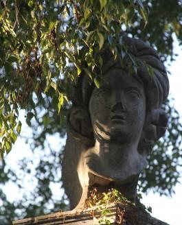 Herboriser dans les jardins vénitiens.