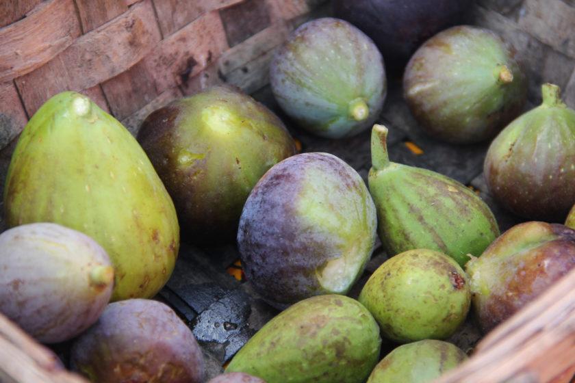 Comment ne pas se laisser tenter par la chair sucrée des figues?