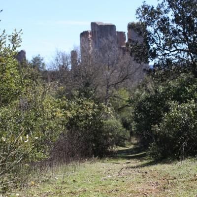 Aménagement de l'Espace Naturel Sensible du Château de Valbelle – Tourves (83) En cours