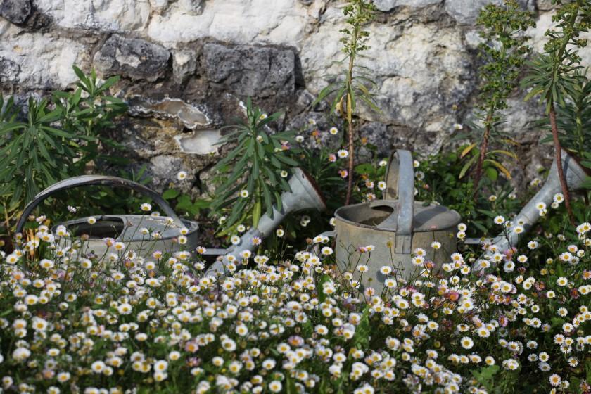 Le jardin sur graviers de la Bigotie…