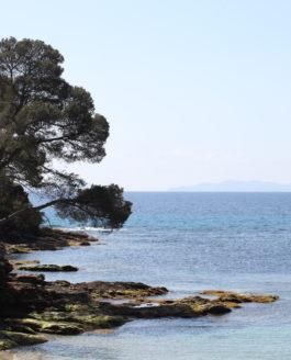 Cette mer ne sépare pas, elle unit – Jean Giono