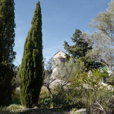 Sentier botanique – jardins de l'Abbaye Saint André, Villeneuve les Avignon (30) – 2019