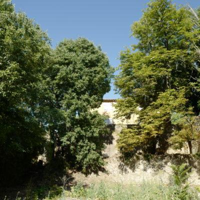 Palette végétale du domaine du  Bresquet – St Nazaire du Gard, (30) en cours