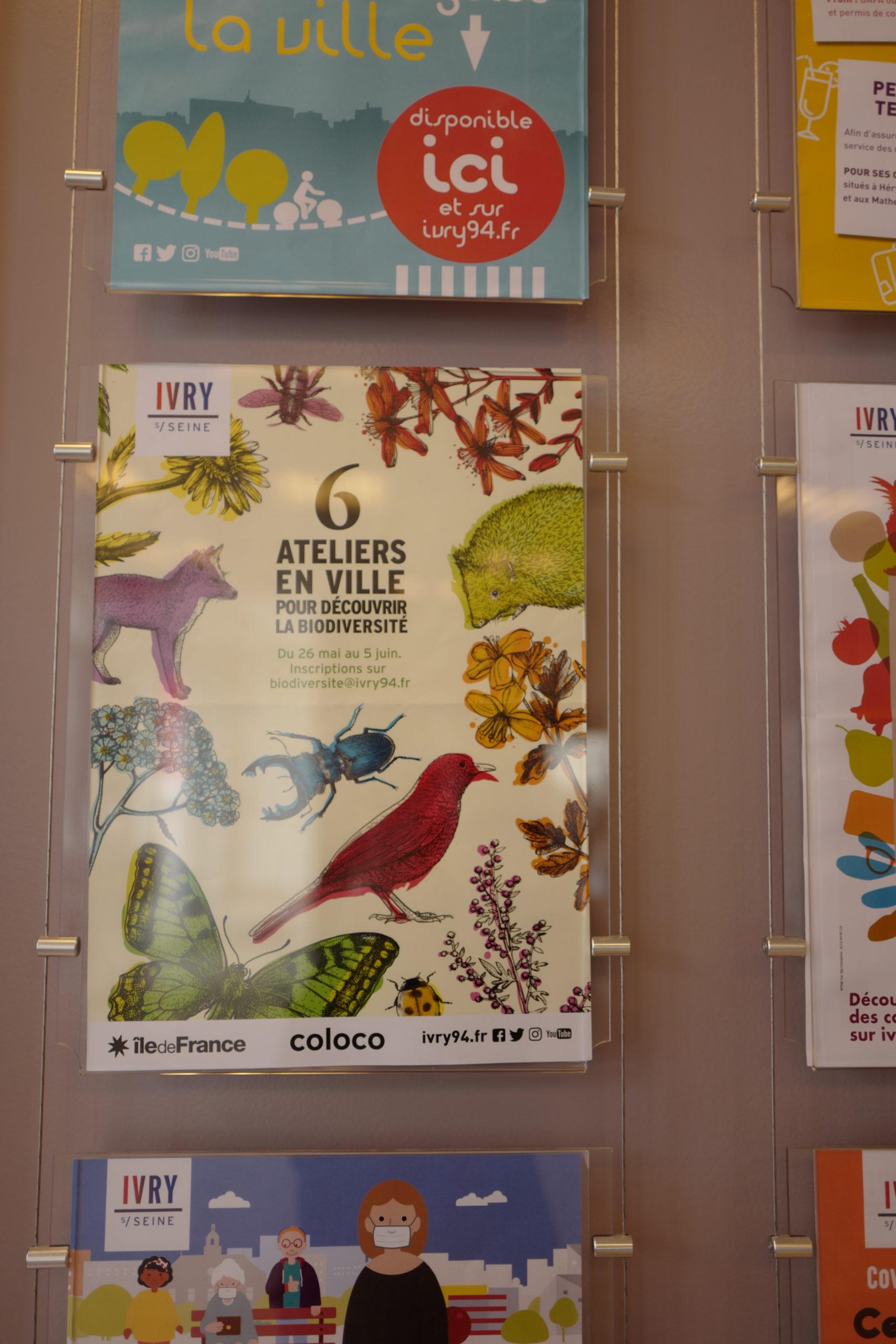Biodiversité Ivry sur Seine ©vmure