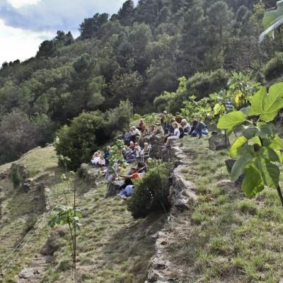 Le jardin des figuiers – Sur le sentier des lauzes (07) 2014-2015