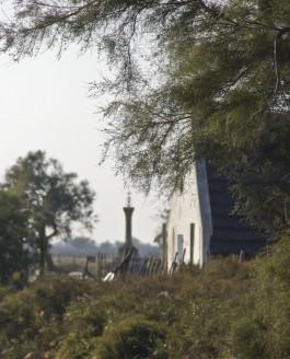 Le tamaris, Gacholo de Camargue